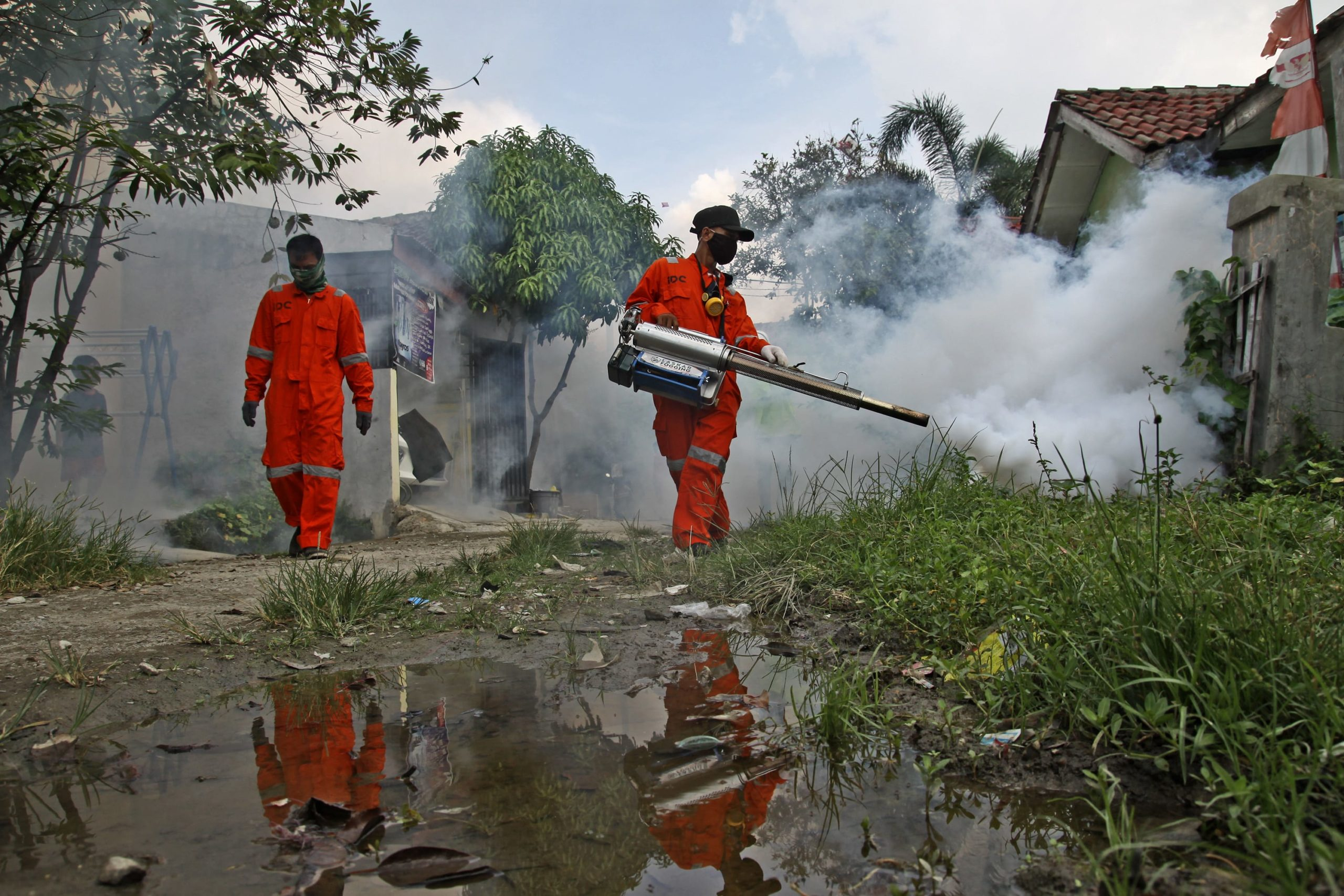Outbreak of dengue fever in Southeast Asia is 'exploding' amid the coronavirus battle