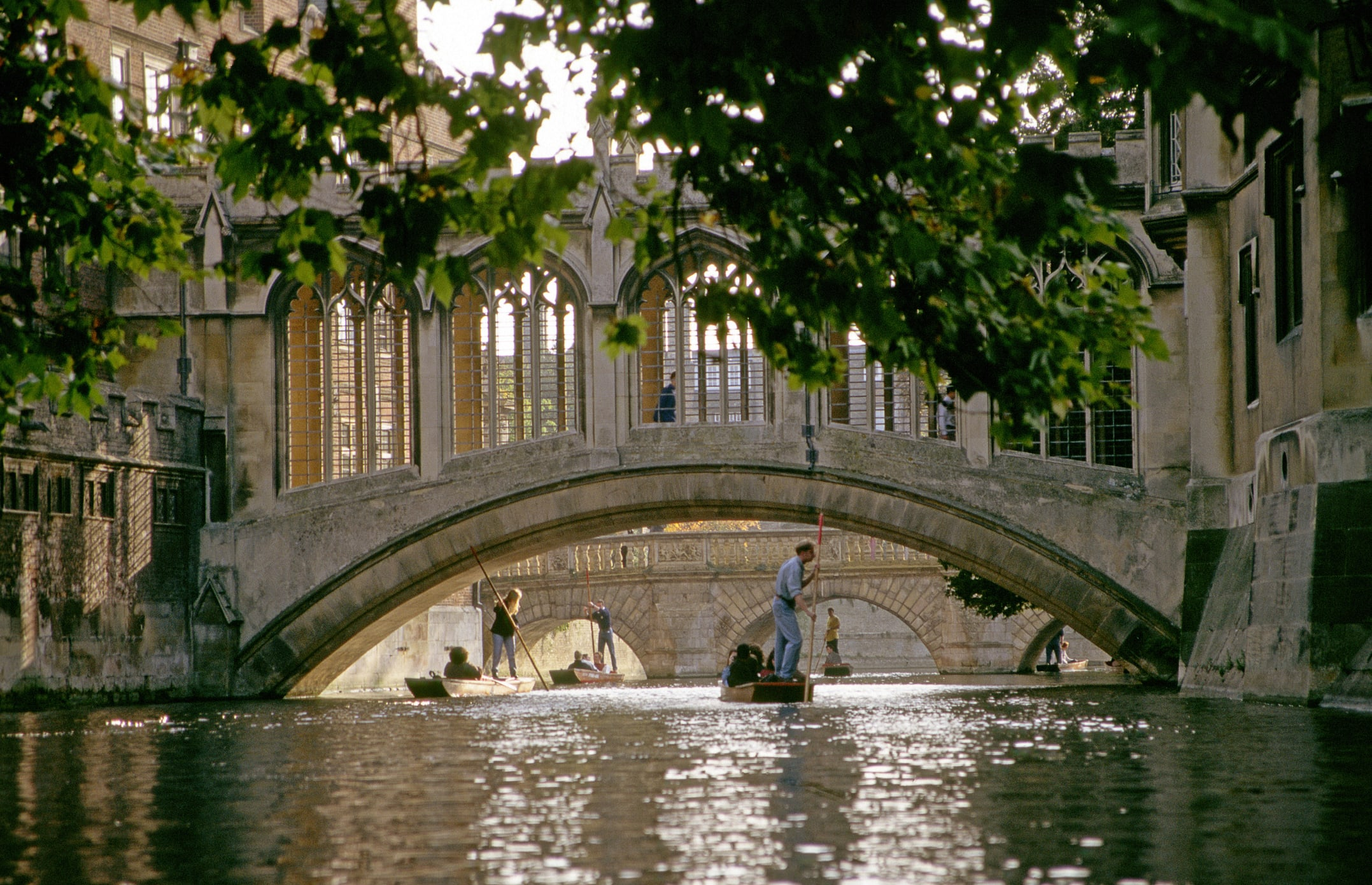 Cambridge College plans to cease fossil gasoline investments by 2030