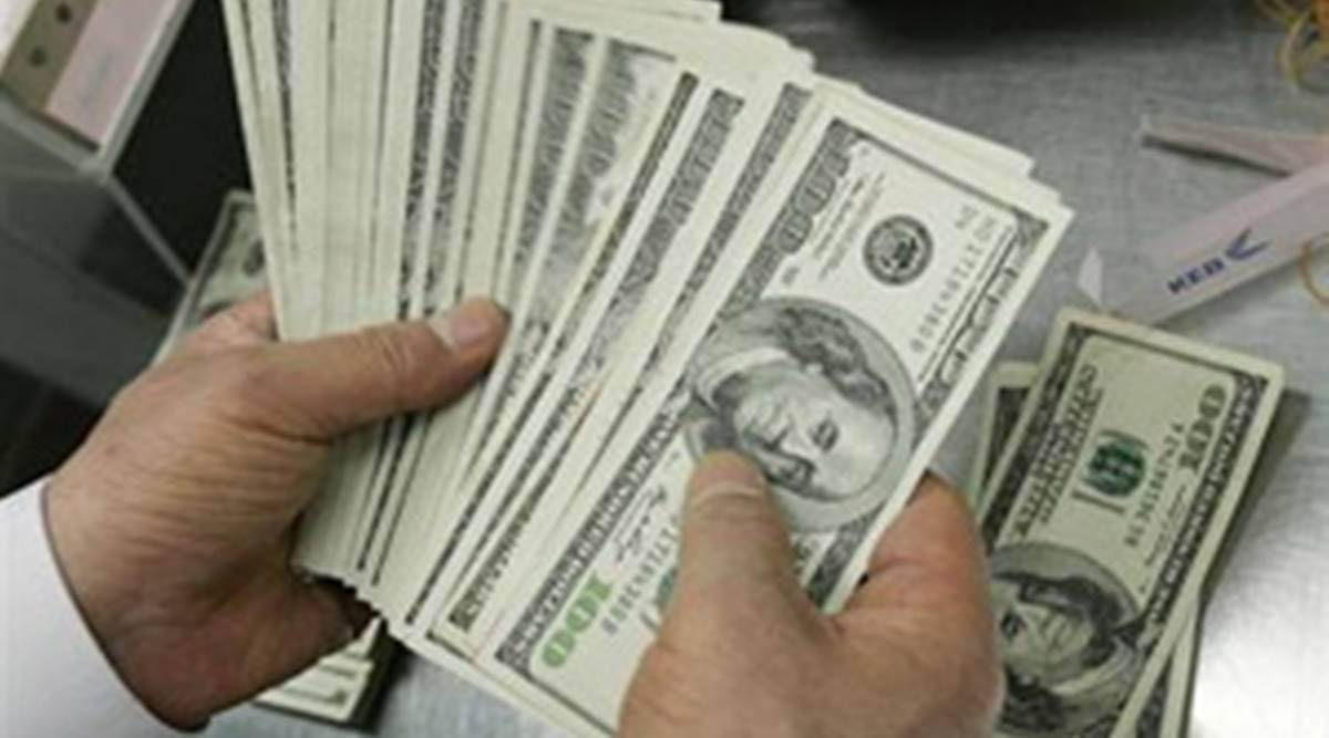 Foreign exchange reserves leap $75 bn since lockdown