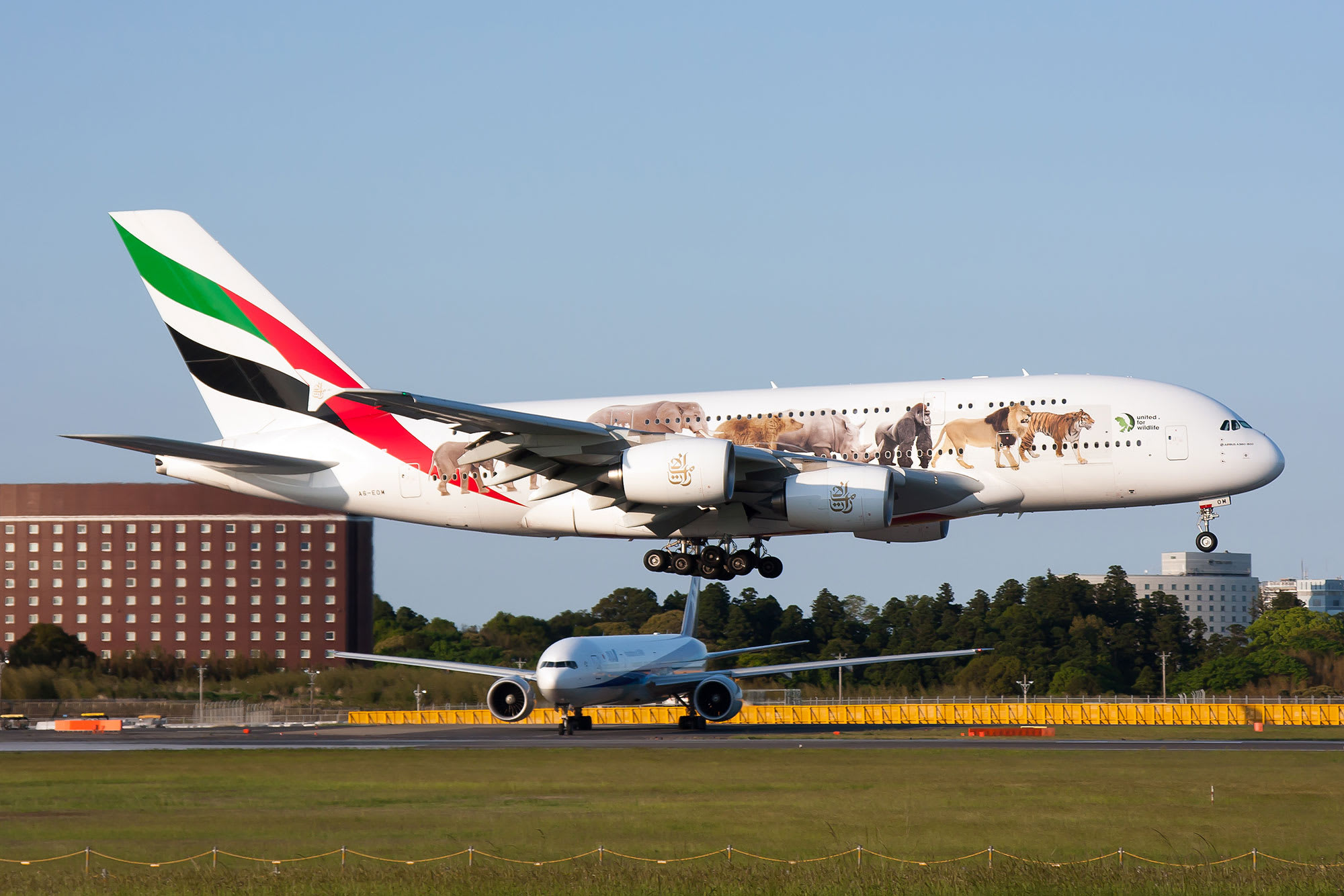 Emirates eyes return to profitability in 2022 as new journey corridors open
