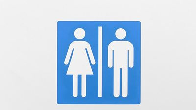 Bogs: Males's, Ladies's or Gender-Impartial?