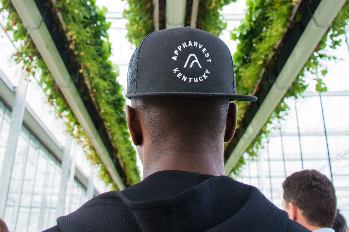 Indoor farming firm with backing from Ubben goals to unravel the issues with America's produce
