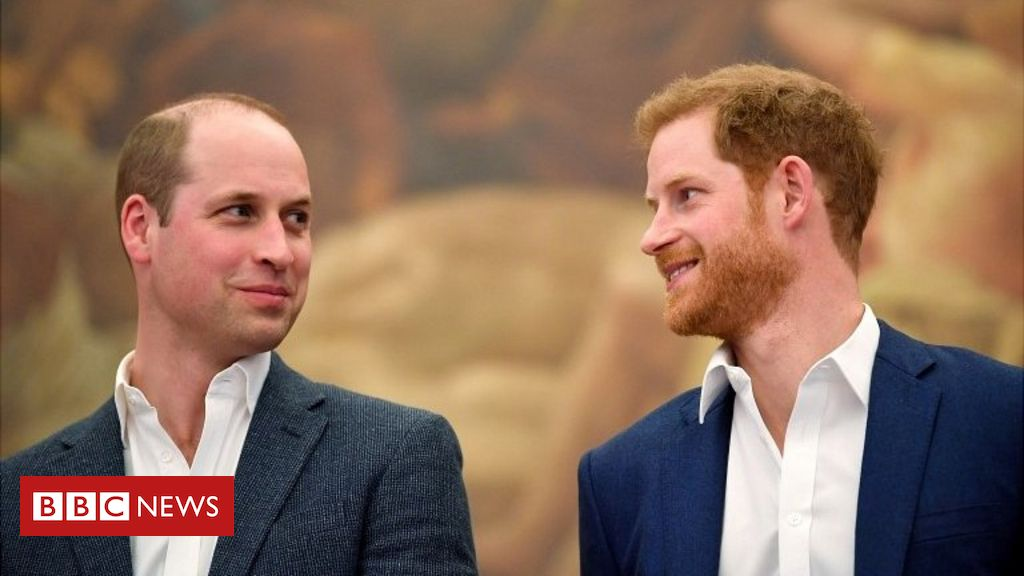 William and Harry 'ought to finish friction now', says Sir John Main