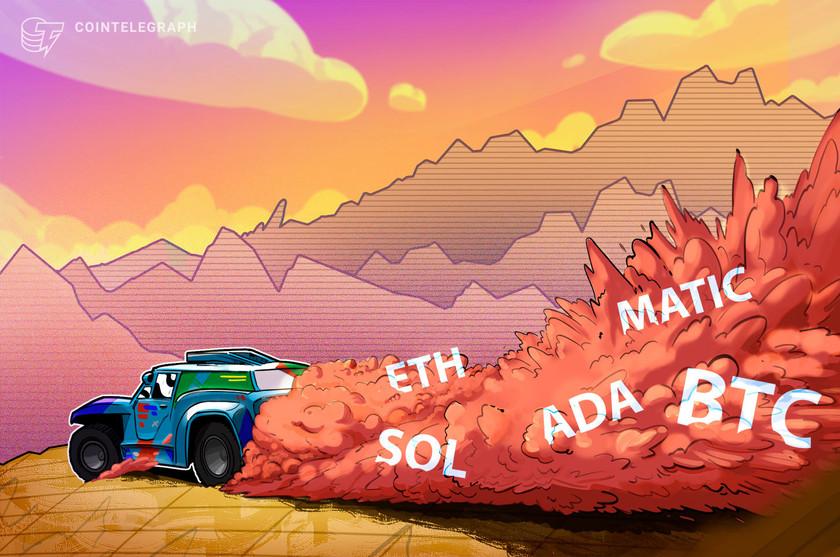 High 5 cryptocurrencies to observe this week: BTC, ETH, ADA, SOL, MATIC