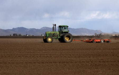 'Wither away and die:' U.S. Pacific Northwest warmth wave bakes wheat, fruit crops