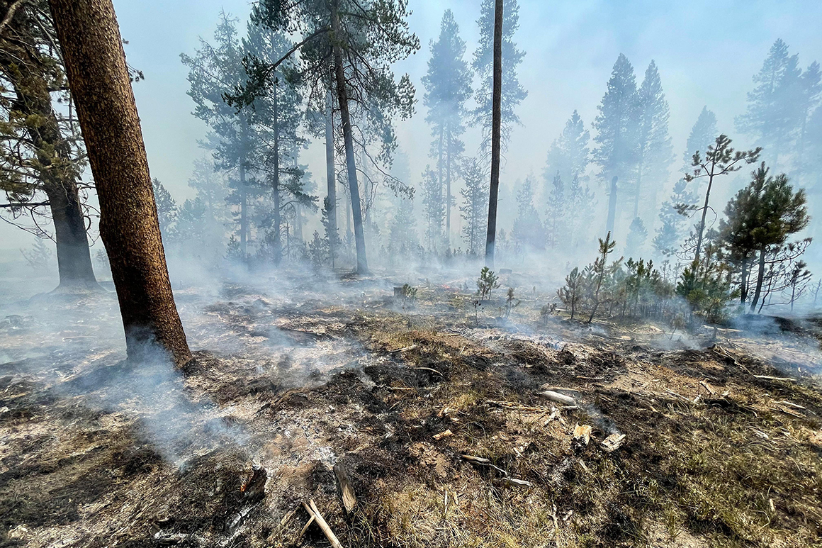 'We will see extra' wildfires, Oregon governor warns