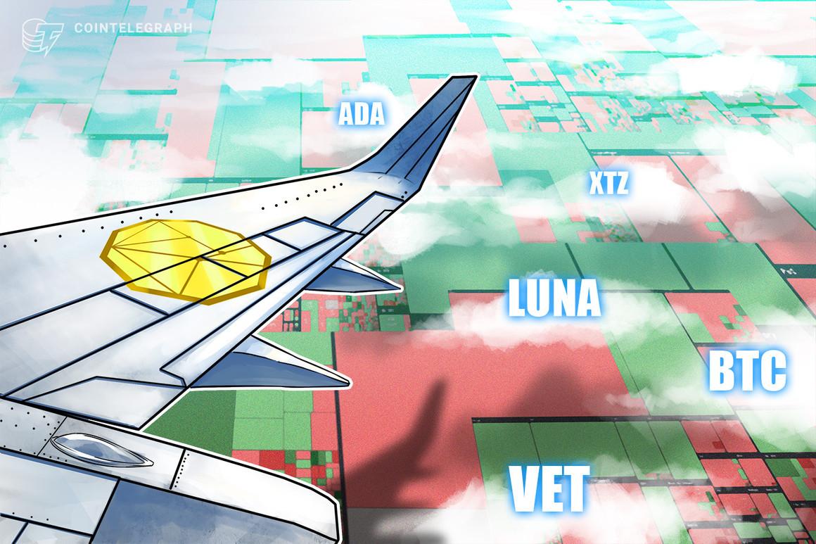 High 5 cryptocurrencies to observe this week: BTC, ADA, LUNA, VET, XTZ