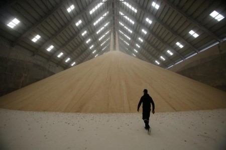 SOFTS-Uncooked sugar falls after scaling 5-1/2 month peak, arabica steadies